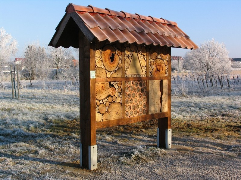 nabu ronnenberg insektenhotel tilsiterstra e. Black Bedroom Furniture Sets. Home Design Ideas